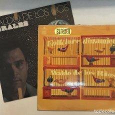 Discos de vinilo: LOTE 2 LP DE WALDO DE LOS RIOS. FOLKLORE DINÁMICO, 1967 (CON LOS WALDOS) Y CORALES ( PÓSTUMA) 1977.. Lote 153382650