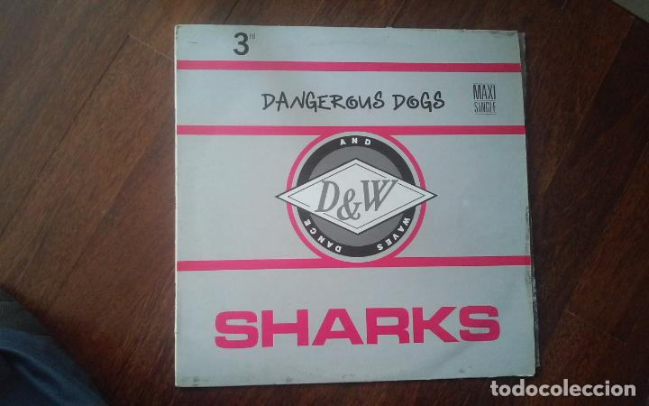 SHARKS-DANGEROUS DOGS.MAXI (Música - Discos de Vinilo - Maxi Singles - Techno, Trance y House)