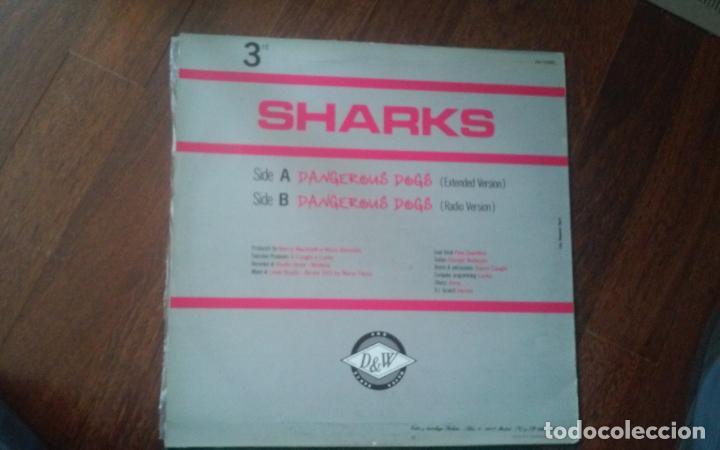 Discos de vinilo: Sharks-dangerous dogs.maxi - Foto 2 - 154937978