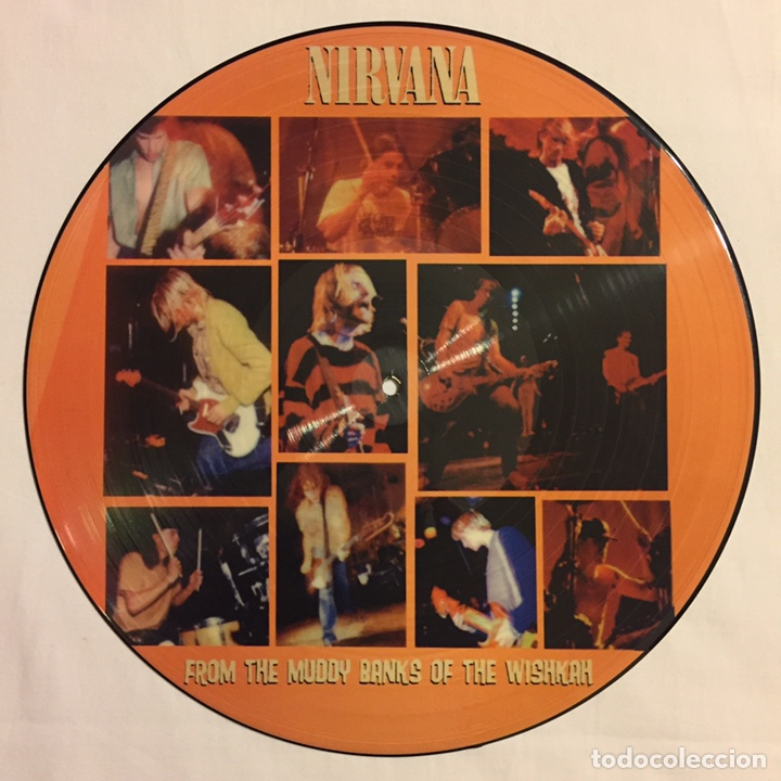 NIRVANA - FROM THE MUDDY BANKS OF THE WISHKAH, PICTURE DISC, ED. LIMITADA, NO-OFICIAL, MÉXICO (Música - Discos - LP Vinilo - Punk - Hard Core)