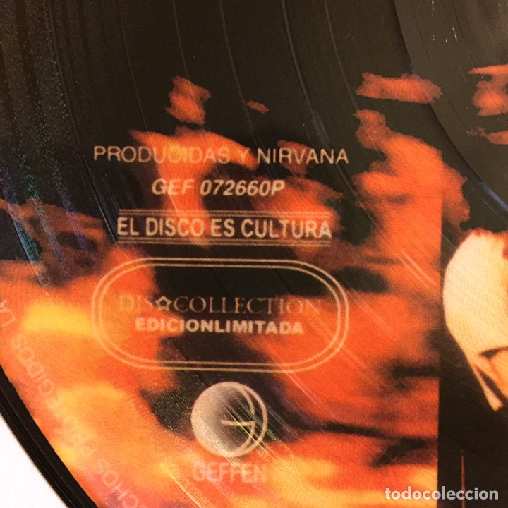 Discos de vinilo: NIRVANA - FROM THE MUDDY BANKS OF THE WISHKAH, PICTURE DISC, ED. LIMITADA, NO-OFICIAL, MÉXICO - Foto 3 - 156012749