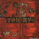 Discos de vinilo: LP TRICKY MAXINQUAYE VINILO TRIP HOP. Lote 159106450
