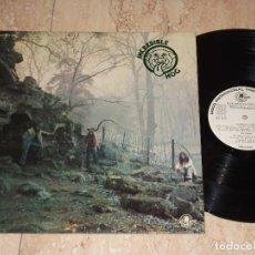 Discos de vinilo: INCREDIBLE HOG ?– VOLUME 1-CARNABY ?– COS 9476-ESPAÑA-1976- -VER DESCRIPCION-. Lote 161100546