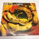 Discos de vinilo: DIET OF WORMS - AREN'T YOU HUNGRY --HARD CORE PUNK. Lote 161128938