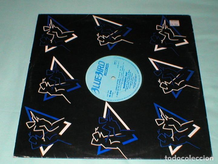 Discos de vinilo: MANFREDO FEST 12 UK MAXI 45 rpm JUNGLE KITTEN 1979 JAZZ FUNK LATIN JAZZ BLUEBIRD BRT1 MUY RARO Mira! - Foto 4 - 165987614