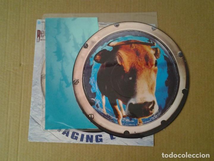 Discos de vinilo: THE BEYOND -RAGING E.P.- EP PICTURE DISC 1991 HARVEST EMI 12HARPD 5301 MUY BUENAS CONDICIONES. - Foto 3 - 166835330