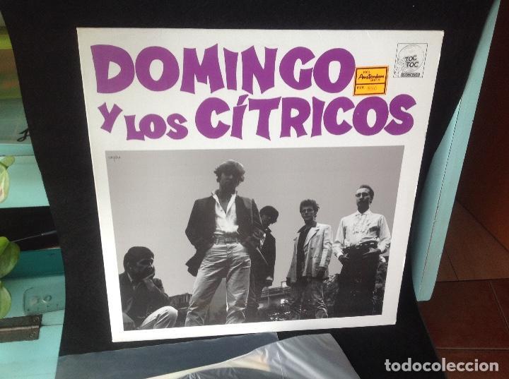 DOMINGO Y LOS CÍTRICOS - S/T - MINI LP - LABEL: TOC TOC - 1987 - POP ROCK (Música - Discos - LP Vinilo - Grupos Españoles de los 70 y 80)
