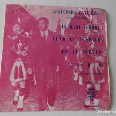Discos de vinilo: ANTONIO LATORRE, Y SU ORQUESTA, ,TU MINI SCHORT, EN EL JARDIN ,CELOSO , 72,PROMOCIONAL, DIFICIL. Lote 168458028