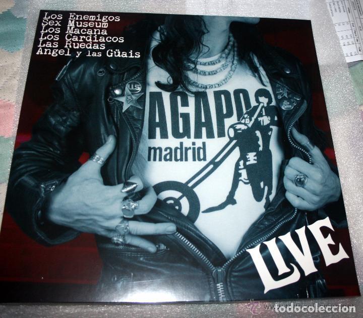 AGAPO LIVE - 2011 MUNSTER RECORDS REISSUE (Música - Discos - LP Vinilo - Grupos Españoles de los 70 y 80)