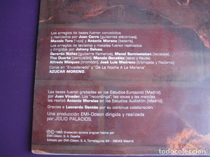 Discos de vinilo: LOS CHUNGUITOS LP EMI 1985 - CONTRA LA PARED - JOHNNY GALVAO - TITO DUARTE - PRECINTADO - RUMBAS POP - Foto 4 - 170218760