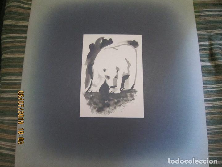 Discos de vinilo: CAT STEVENS - FOREIGNER LP - ORIGINAL U.S.A. - A&M 1973 CON ENCARTE CARTON DURO Y FUNDA INTERIOR. - - Foto 7 - 170978439