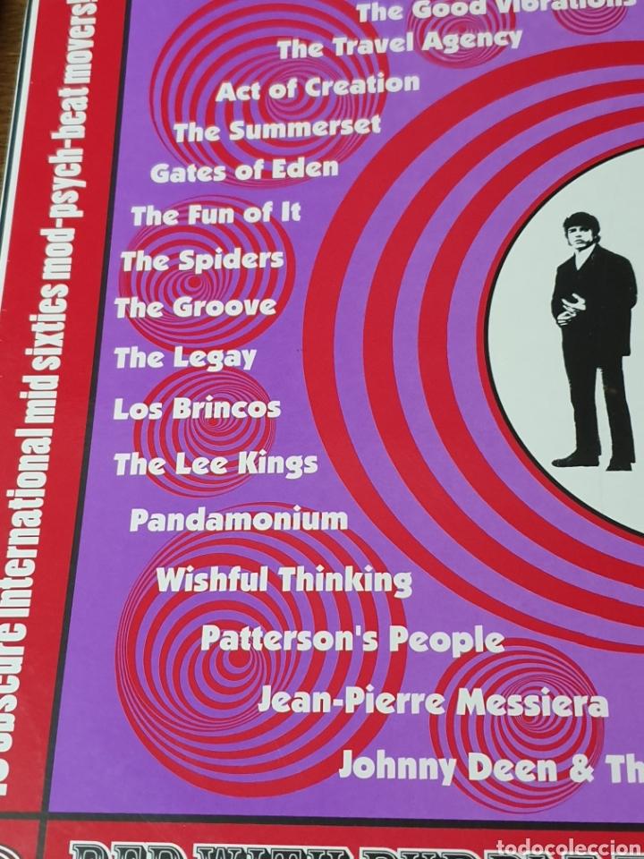 Discos de vinilo: Various ?– Red With Purple Flashes Vol. 2, Parka 2000. compilation.de originales. - Foto 7 - 171359348