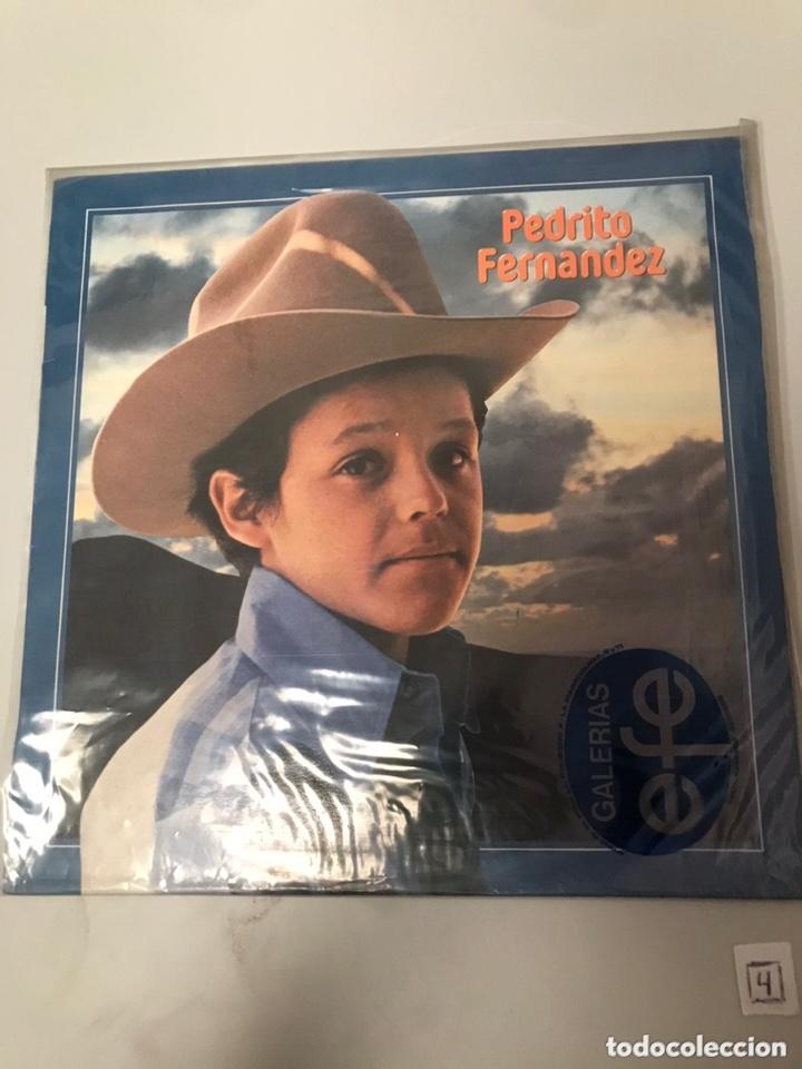 LP PEDRITO FERNÁNDEZ (Música - Discos - LP Vinilo - Cantautores Extranjeros)