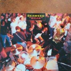 Discos de vinilo: SEAWEED - WEAK (LP) 1992. Lote 174496047