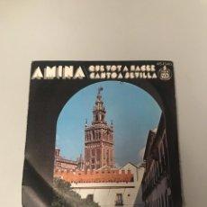 Discos de vinilo: AMINA. Lote 175726054