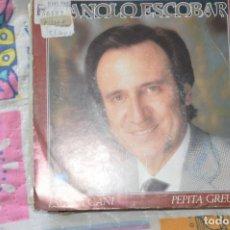 Discos de vinilo: 12 SINGLES MÚSICA VARIADA. Lote 176255449
