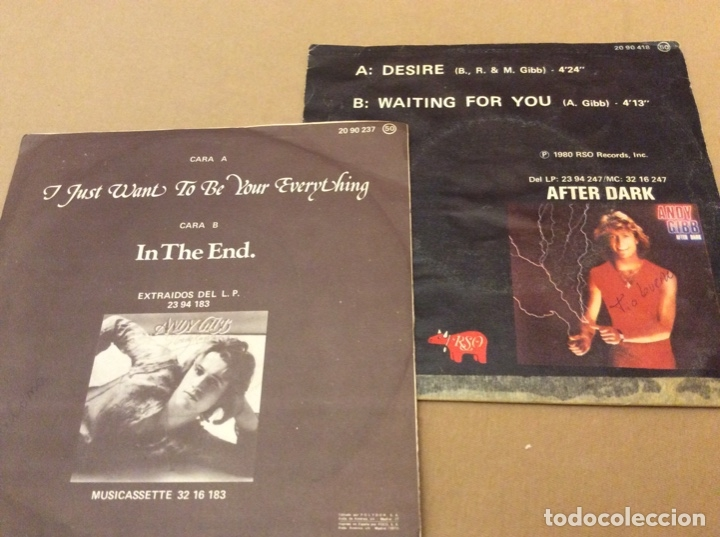 Discos de vinilo: Andy gibb. I just want to be your everything/ in The end. + desire/waiting for you. Lote 2 singles. - Foto 2 - 177016910