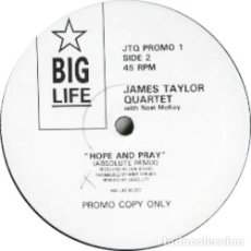 Discos de vinilo: THE JAMES TAYLOR QUARTET WITH NOEL MCKOY HOPE AND PRAY (12 PULGADAS) . ACID JAZZ PRISONERS. Lote 178215753