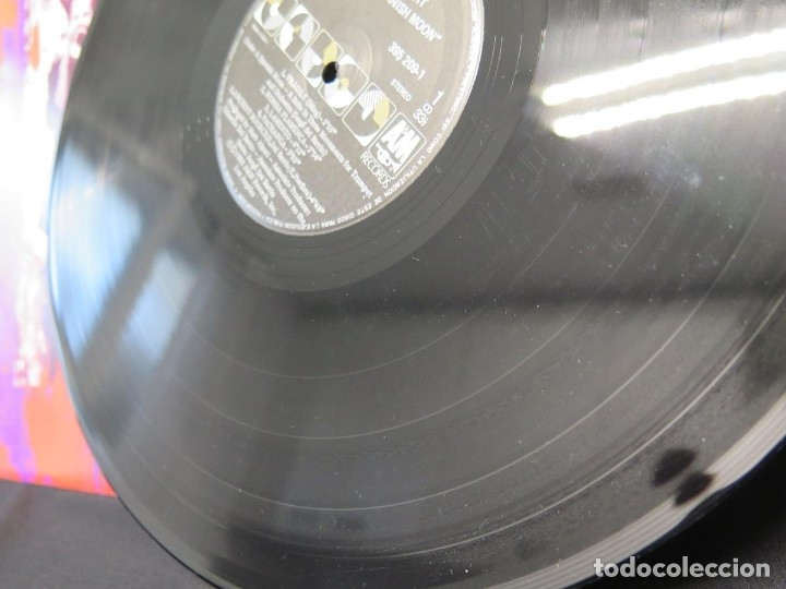 Discos de vinilo: HERB ALPERT - UNDER A SPANISH MOON (LP-Vinilo) AÑO 1988, COMO NUEVO-CALIDAD - Foto 16 - 178216845
