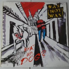 Discos de vinilo: WAS(NOT WAS); WHATS UP DOGS? FONTANA.1988.. Lote 178926222