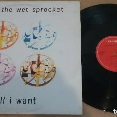 Discos de vinilo: TOAD THE WET SPROCKET / ALL I WANT / MAXI-SINGLE 12 INCH. Lote 183464307