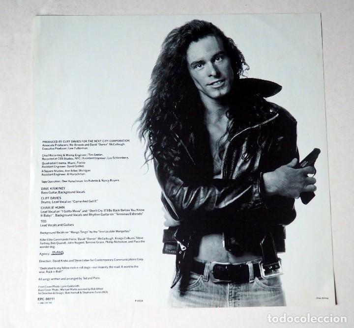 Discos de vinilo: LP. TED NUGENT. SCREAM DREAM. AÑO 1980 - Foto 3 - 184550053