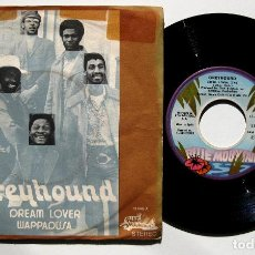 Discos de vinil: GREYHOUND - DREAM LOVER - SINGLE BLUE MOUNTAIN 1972 BPY. Lote 186249130