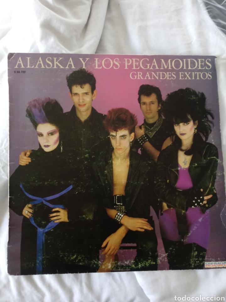 ALASKA Y LOS PEGAMOIDES GRANDES EXITOS MOVIDA PUNK ANA CURRA PARALISIS (Música - Discos - LP Vinilo - Grupos Españoles de los 70 y 80)