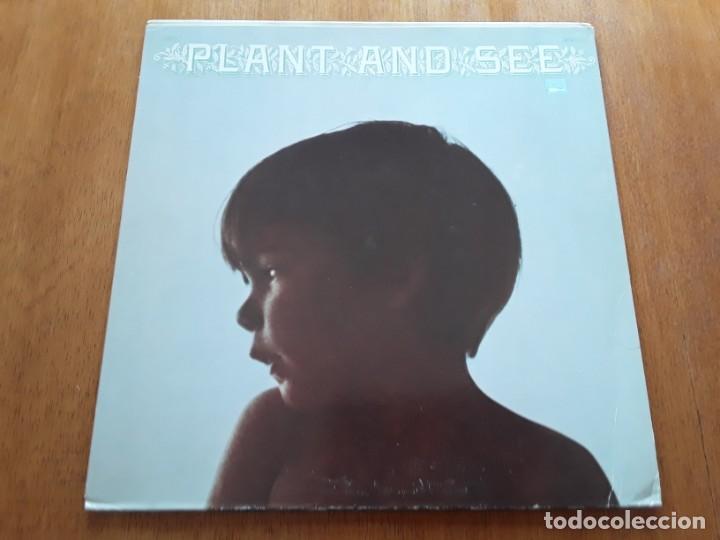 PLANT AND SEE S/T (WHITE WHALE WW 7120 - USA 1969) PSYCHEDELIC ROCK ORIGINAL LP (Música - Discos - LP Vinilo - Pop - Rock Extranjero de los 50 y 60)