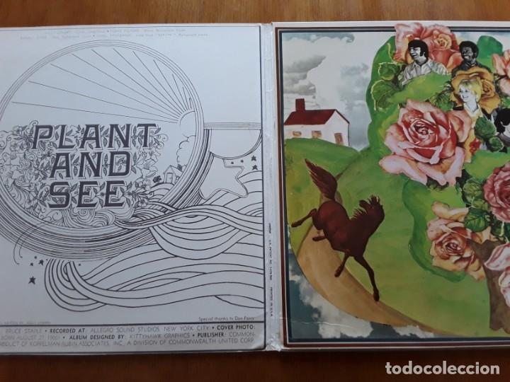 Discos de vinilo: PLANT AND SEE s/t (White Whale WW 7120 - USA 1969) PSYCHEDELIC ROCK ORIGINAL LP - Foto 2 - 188419408