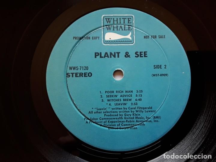 Discos de vinilo: PLANT AND SEE s/t (White Whale WW 7120 - USA 1969) PSYCHEDELIC ROCK ORIGINAL LP - Foto 5 - 188419408