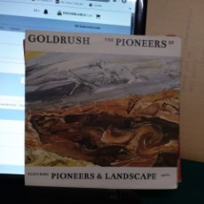 Discos de vinilo: THE PIONEERS, VIRGIN 2002. Lote 190176585