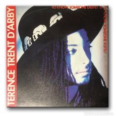 Discos de vinilo: TERENCE TRENT D'ARBY - TO KNOW SOMEONE DEEPLY IS TO KNOW SOMEONE SOFTLY . Lote 190326393