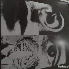 Discos de vinilo: DISCHARGE HEAR NOTHING,SEE NOTHING,SAY NOTHING. PRECINTADO ,SIN ABRIR,NUEVO. Lote 190355030