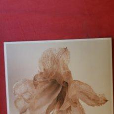 Discos de vinilo: EP GRUPO DE EXPERTOS SOLYNIEVE. ANTIGUO Y NUEVO.. Lote 193440631