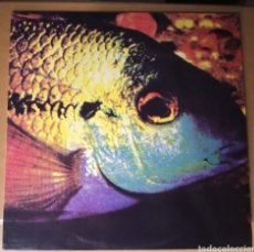 Discos de vinilo: THE BOMBA PATTY - FISH - VINILO. Lote 194526405