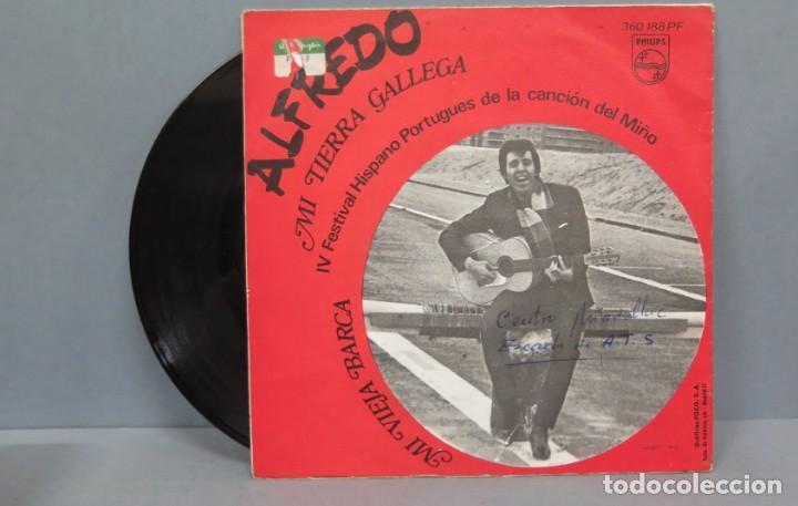 Discos de vinilo: SINGLE. ALFREDO. MI TIERRA GALLEGA - Foto 2 - 194606835