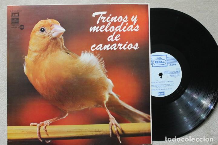 TRINOS Y MELODIASDE CANARIOS LP VINILO MADE IN SPAIN 1976 (Música - Discos - LP Vinilo - Otros estilos)