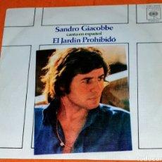 Discos de vinilo: SINGLE VINILO GEORGIE DANN, SANDRO GIACOBBE, CANTA EN ESPAÑOL: EL JARDÍN PROHIBIDO Y SEÑORA MÍA.. Lote 194962500