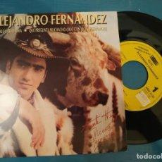 Discos de vinilo: ALEJANDRO FERNANDEZ EN CUALQUIER IDIOMA DUO VICENTE FERNANDEZ SINGLE VINILO PROMO ESPAÑA. Lote 195119283