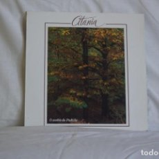 Discos de vinilo: CITANIA - O ASUBÍO O PADRIÑO. Lote 195444892