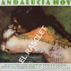Discos de vinilo: MAGNIFICO LP - ANDALUCIA HOY. Lote 197515906