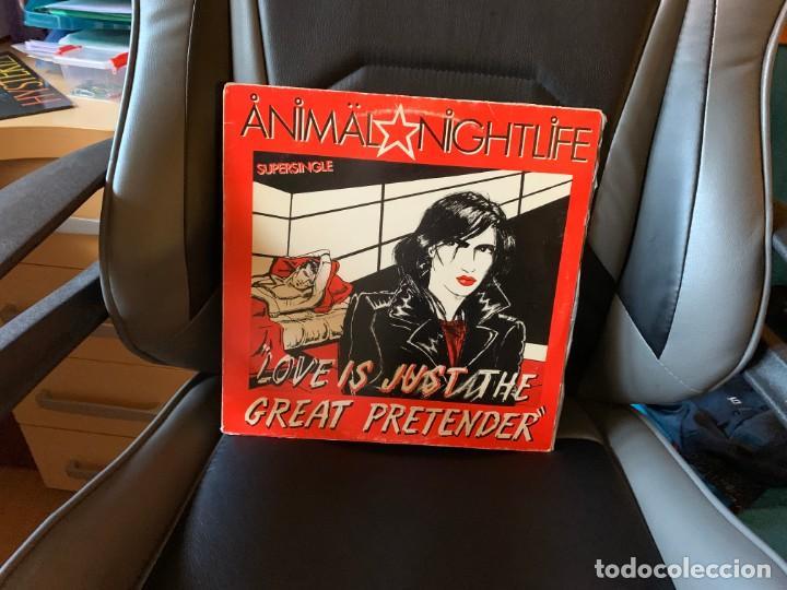 ANIMAL NIGHTLIFE – LOVE IS JUST THE GREAT PRETENDER. DISCO VINILO. COLECCIONISMO (Música - Discos de Vinilo - Maxi Singles - Grupos Españoles de los 70 y 80)