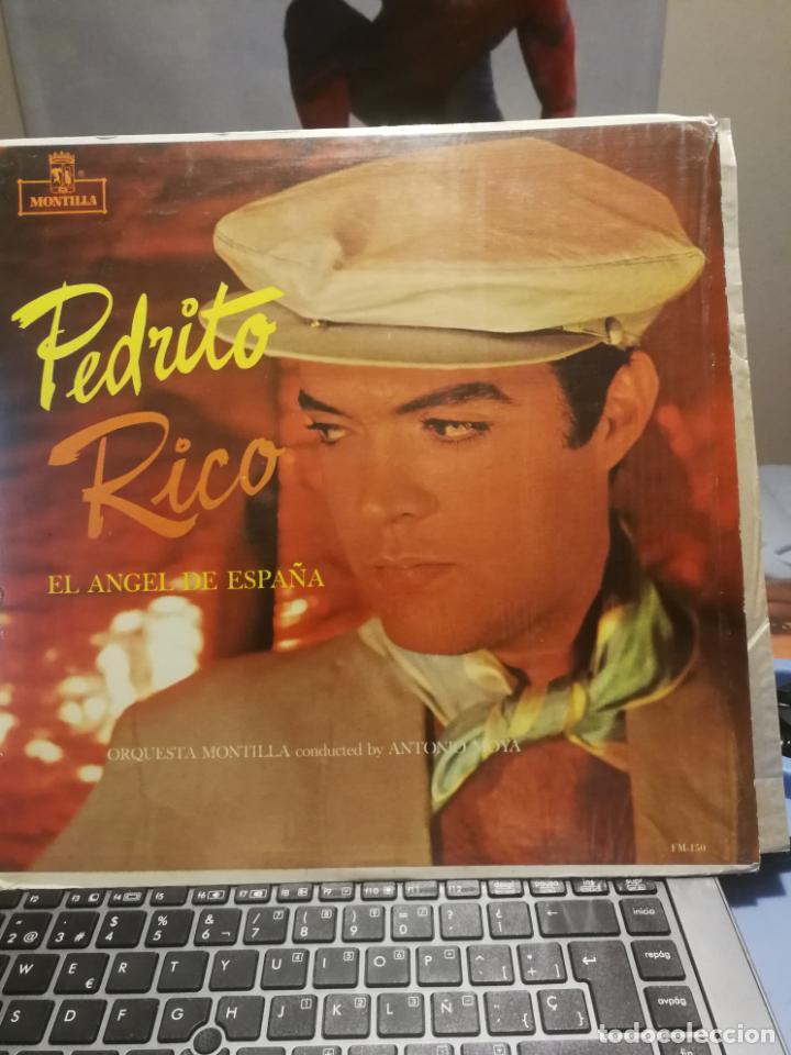 PEDRITO RICO LP EL ANGEL DE ESPAÑA,SELLO MONTILLA EDITADO EN VENEZUELA (Música - Discos - LP Vinilo - Grupos y Solistas de latinoamérica)