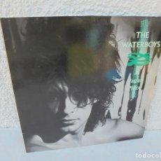 Discos de vinilo: THE WATERBOYS. A PAGAN PLACE. LP VINILO. ARIOLA EURODISC. 1984.. Lote 200101218