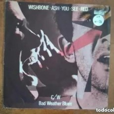 Discos de vinilo: WISHBONE ASH - YOU SEE RED (SG) 1978. Lote 201235748