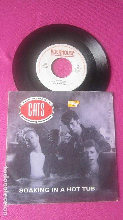 Discos de vinilo: THE RUMBLE CATS SOAKING IN A HOT TUB ROCKHOUSE VINILO RARO 1991 MA25 - Foto 4 - 201311385