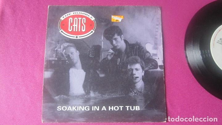 THE RUMBLE CATS SOAKING IN A HOT TUB ROCKHOUSE VINILO RARO 1991 MA25 (Música - Discos de Vinilo - EPs - Rock & Roll)
