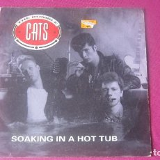Discos de vinilo: THE RUMBLE CATS SOAKING IN A HOT TUB ROCKHOUSE VINILO RARO 1991 MA25. Lote 201311385
