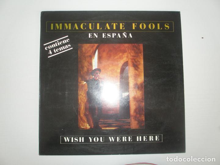 IMMACULATE FOOLS EN ESPAÑA WISH YOU WERE HERE 1987 MXSG A&M RECORDS SPAIN 885 939-1 - IMMACULATE FO (Música - Discos de Vinilo - Maxi Singles - Otros estilos)